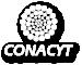 Consejo Nacional de Ciencia y Tecnología